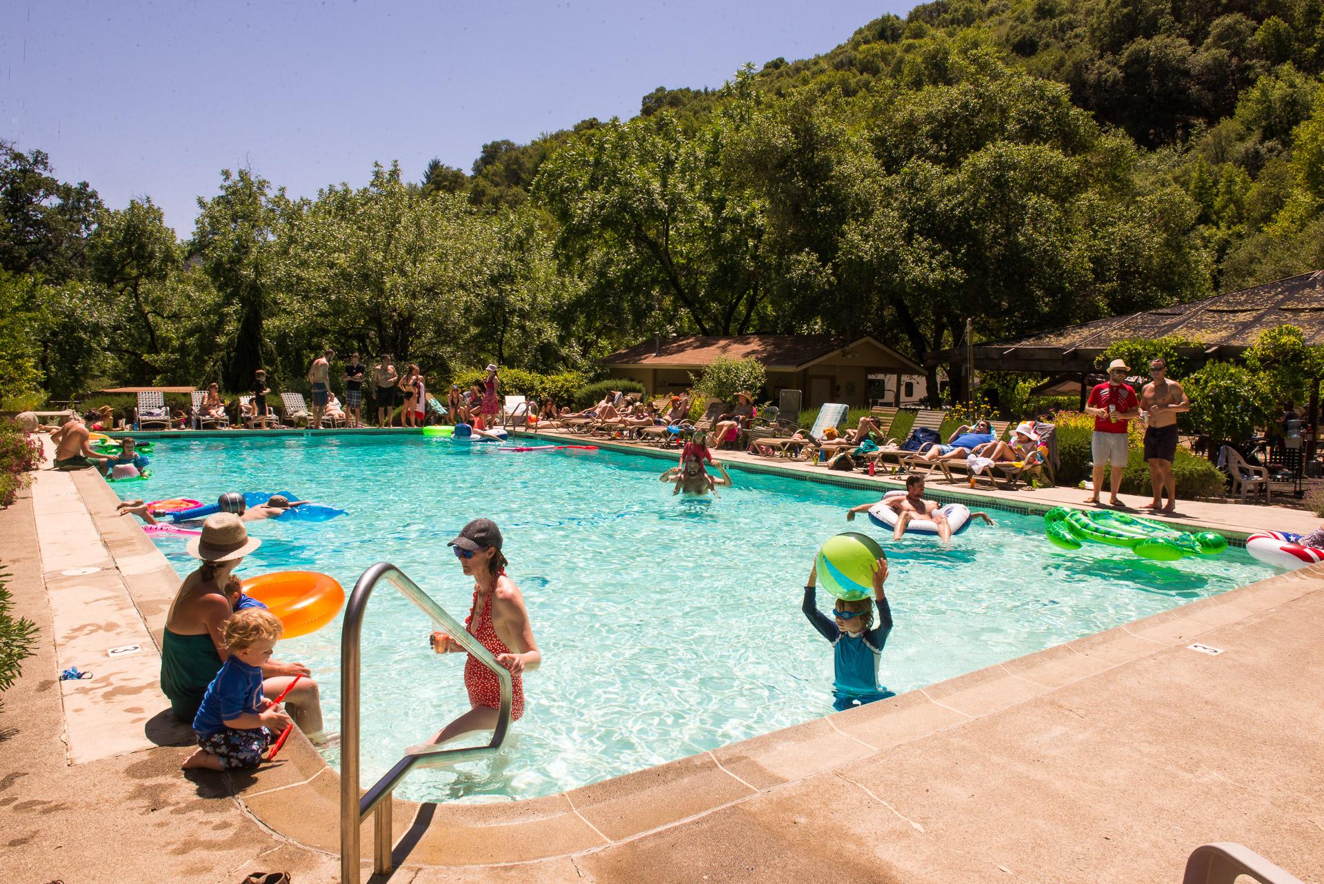 plunge-2014-pool
